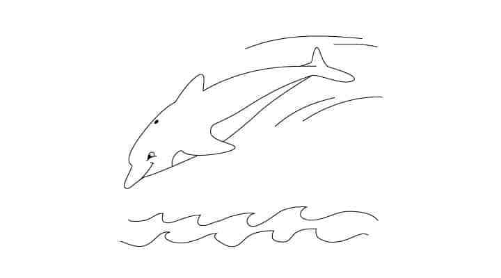 comment-dessiner-un-dauphin-tutoriel-simple-15